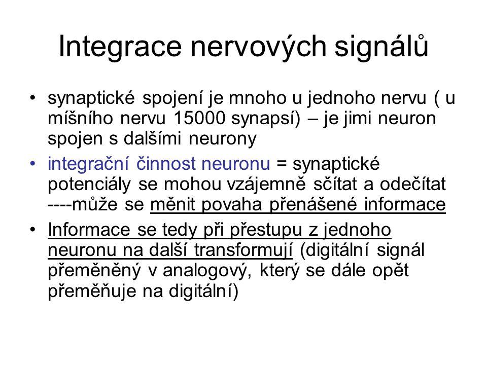 Integrace nervových signálů