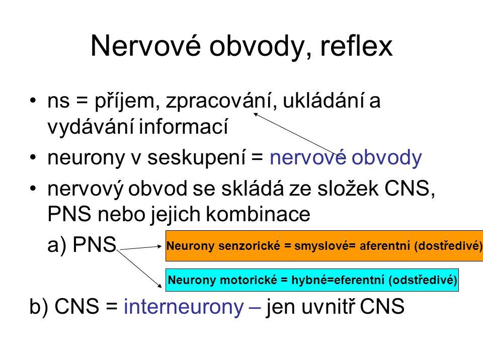 Nervové obvody, reflex ns = příjem, zpracování, ukládání a vydávání informací. neurony v seskupení = nervové obvody.