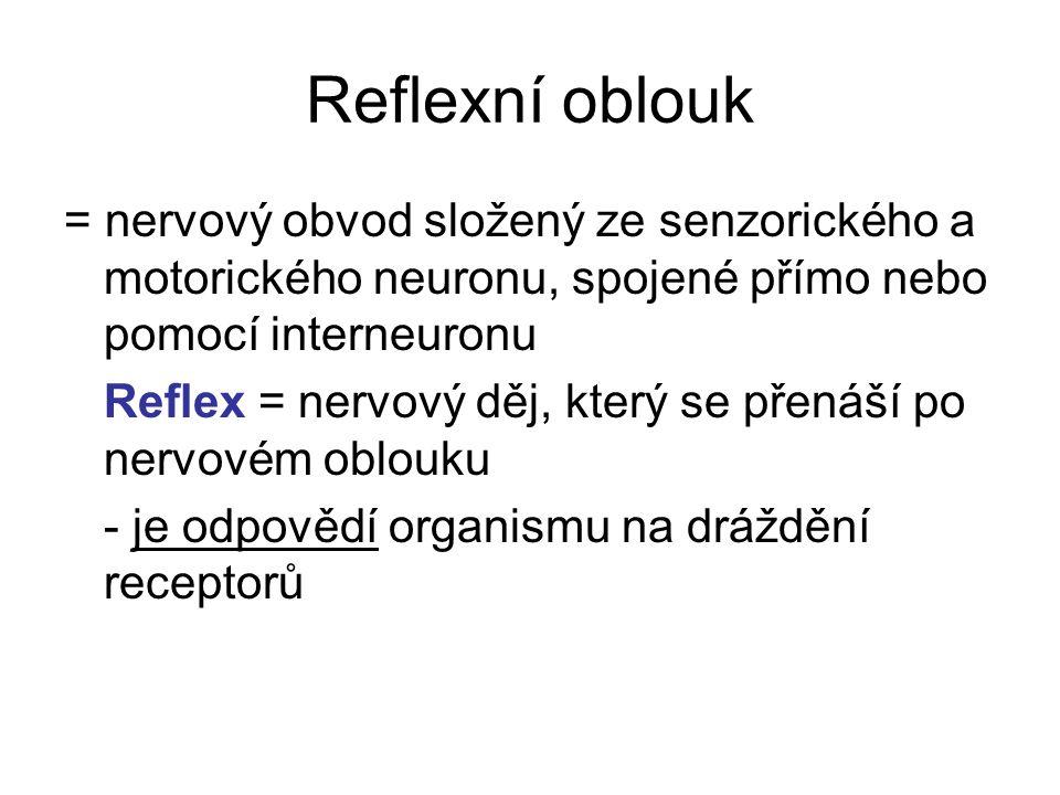 Reflexní oblouk = nervový obvod složený ze senzorického a motorického neuronu, spojené přímo nebo pomocí interneuronu.