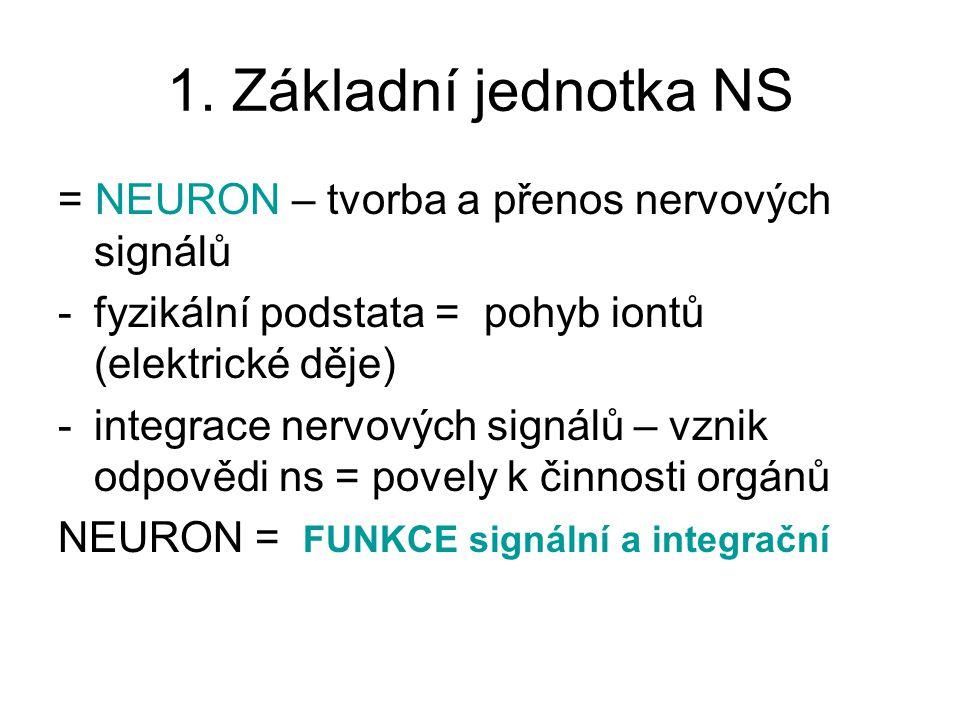 1. Základní jednotka NS = NEURON – tvorba a přenos nervových signálů