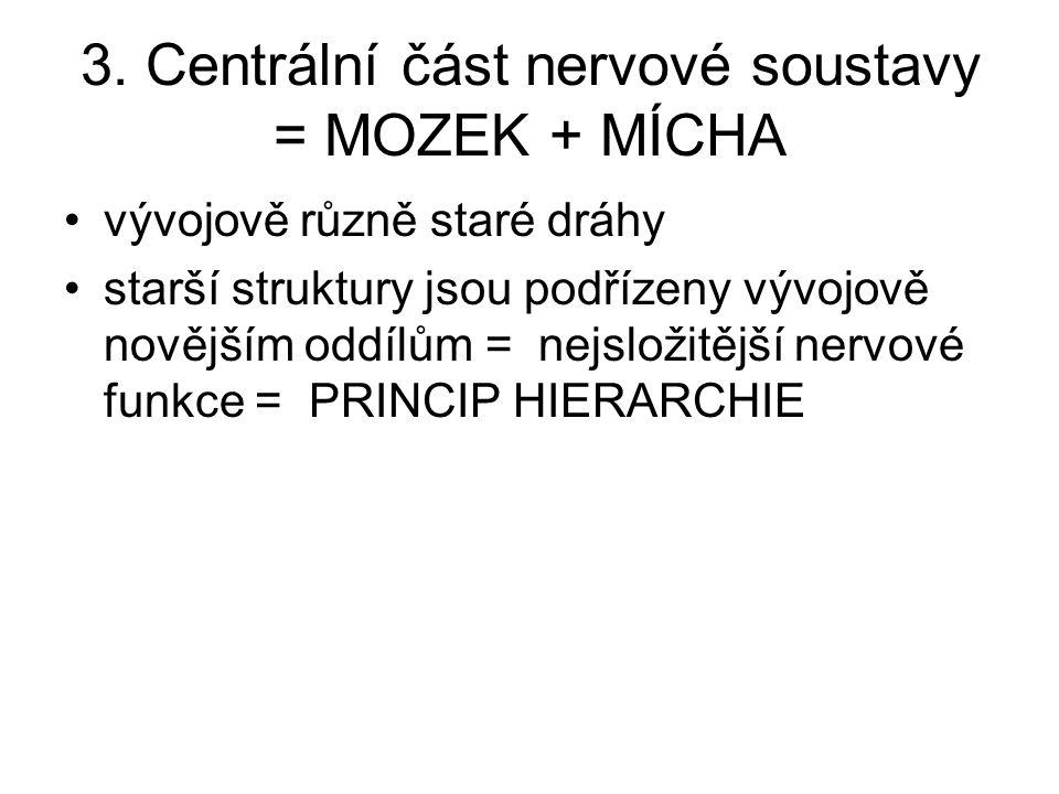 3. Centrální část nervové soustavy = MOZEK + MÍCHA