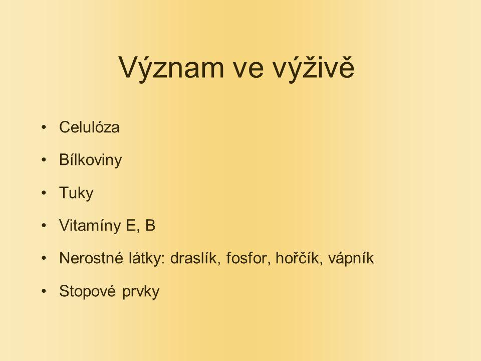 Význam ve výživě Celulóza Bílkoviny Tuky Vitamíny E, B