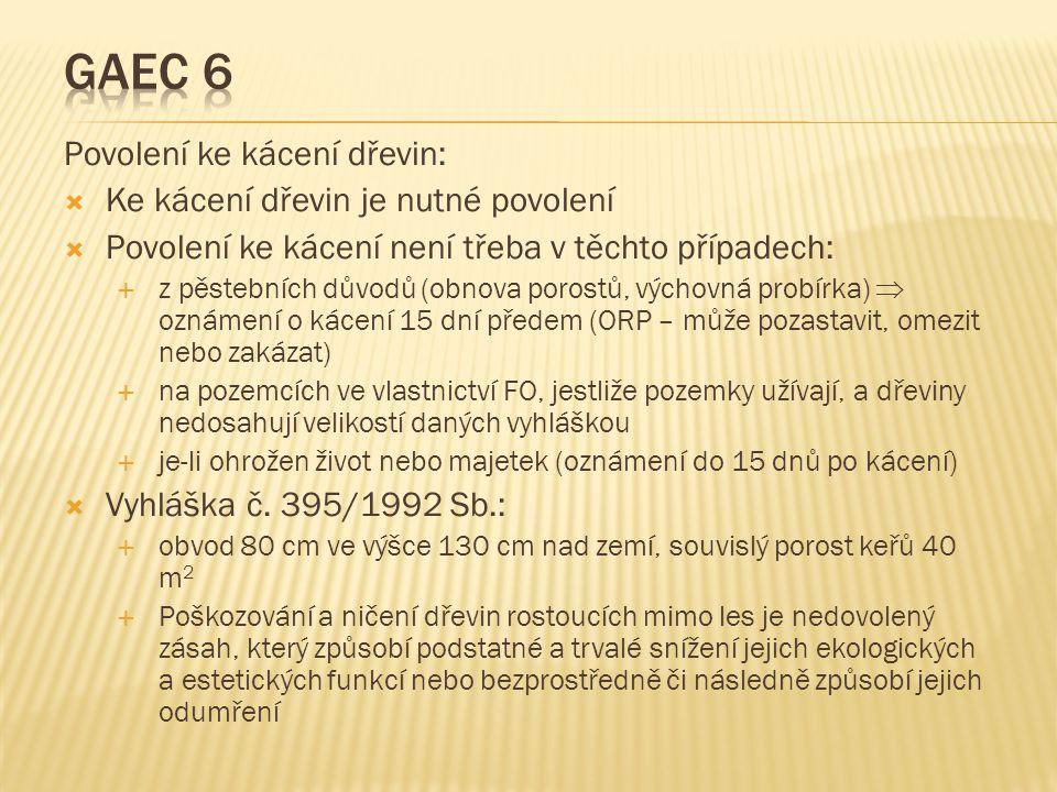 GAEC 6 Povolení ke kácení dřevin: Ke kácení dřevin je nutné povolení