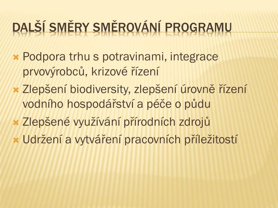 Další směry směrování programu