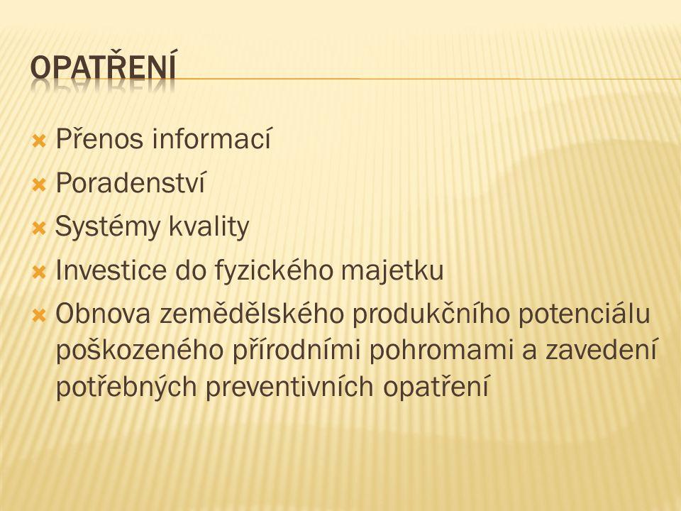 Opatření Přenos informací Poradenství Systémy kvality