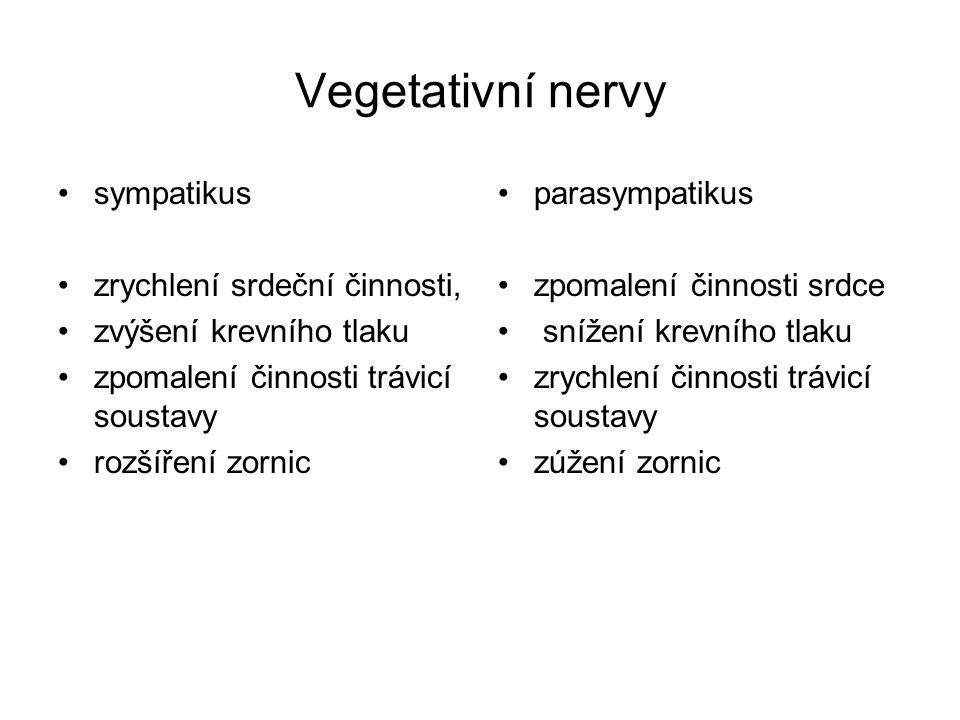 Vegetativní nervy sympatikus zrychlení srdeční činnosti,