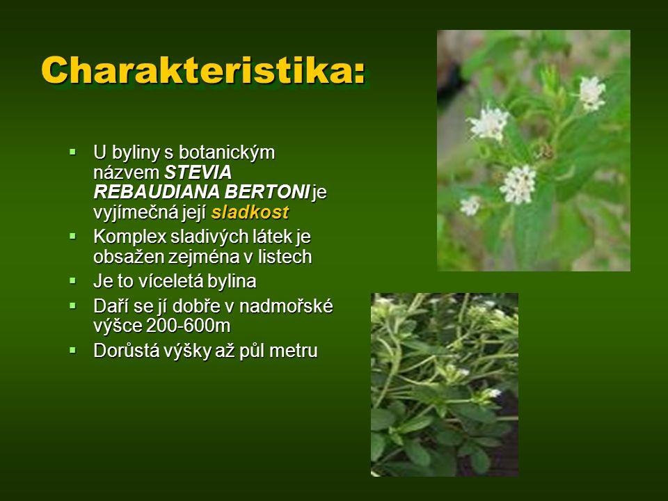 Charakteristika: U byliny s botanickým názvem STEVIA REBAUDIANA BERTONI je vyjímečná její sladkost.
