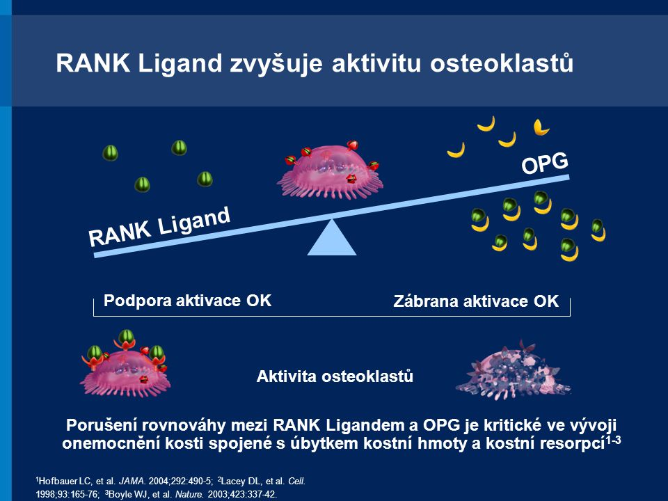 RANK Ligand zvyšuje aktivitu osteoklastů