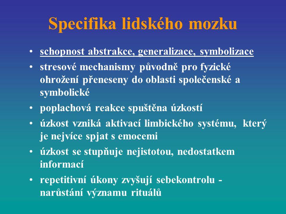 Specifika lidského mozku