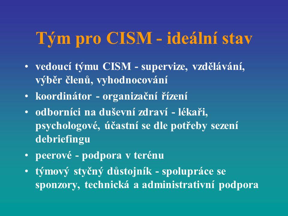 Tým pro CISM - ideální stav