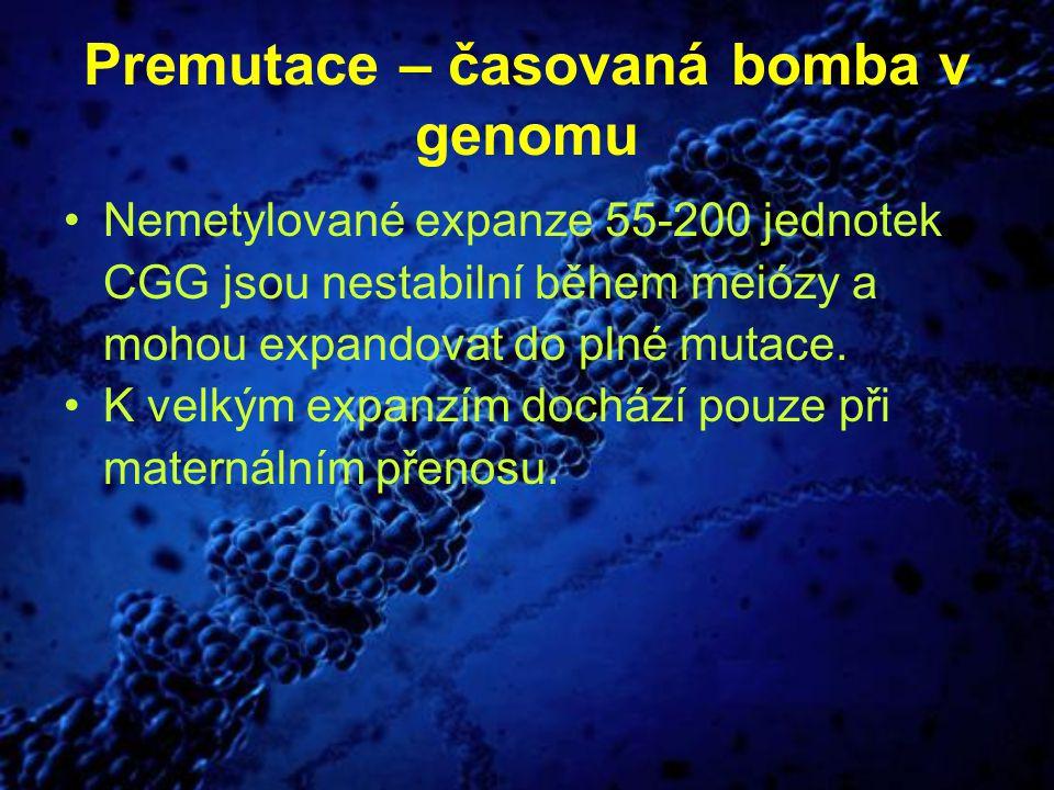 Premutace – časovaná bomba v genomu