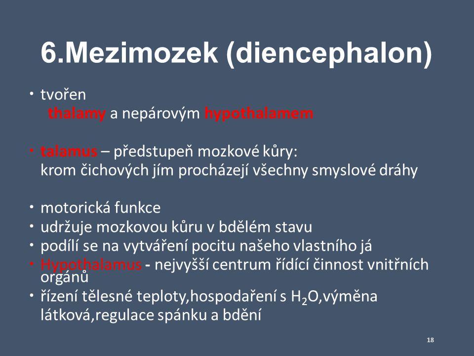 6.Mezimozek (diencephalon)