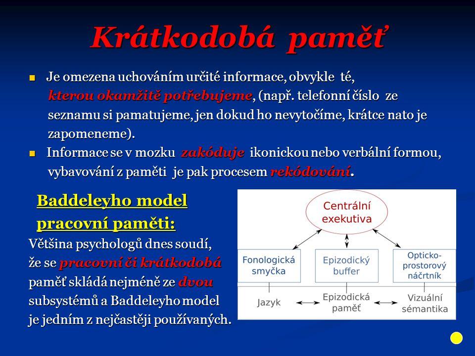 Krátkodobá paměť Baddeleyho model pracovní paměti: