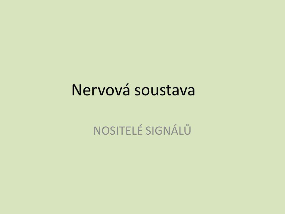 Nervová soustava NOSITELÉ SIGNÁLŮ