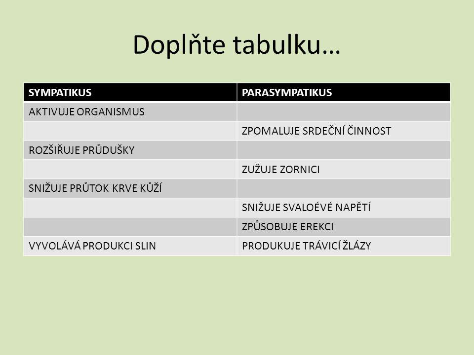 Doplňte tabulku… SYMPATIKUS PARASYMPATIKUS AKTIVUJE ORGANISMUS
