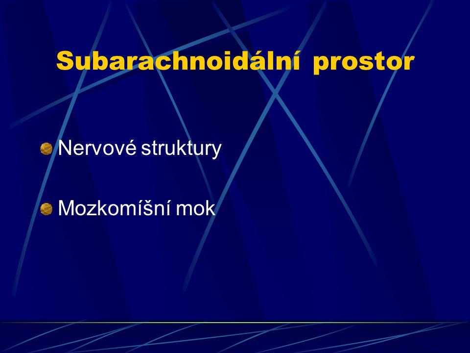 Subarachnoidální prostor