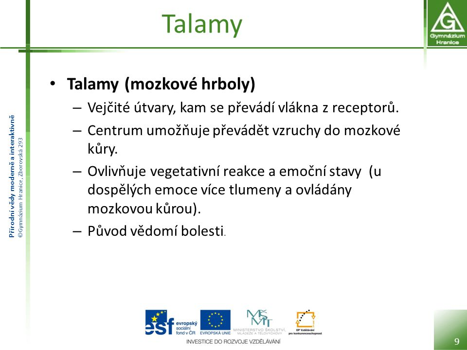 Talamy Talamy (mozkové hrboly)