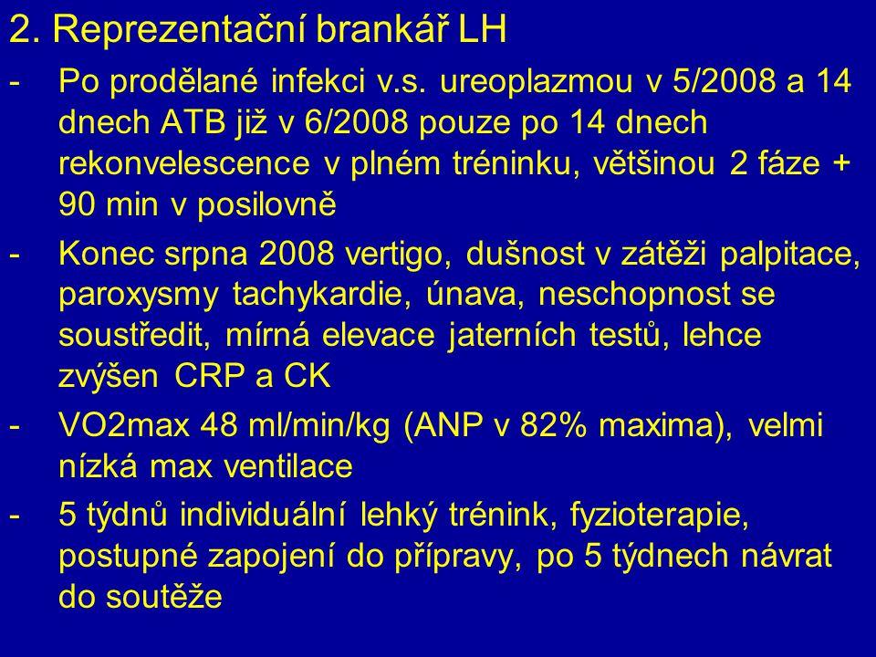 2. Reprezentační brankář LH