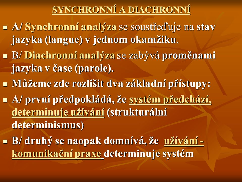 SYNCHRONNÍ A DIACHRONNÍ