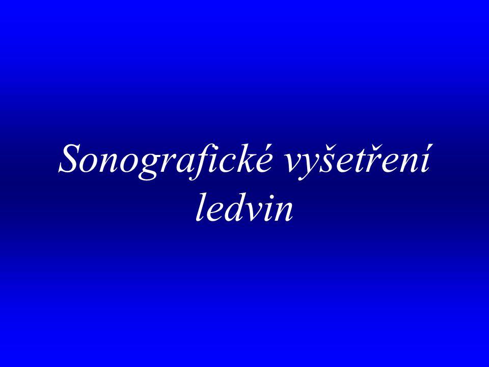 Sonografické vyšetření ledvin