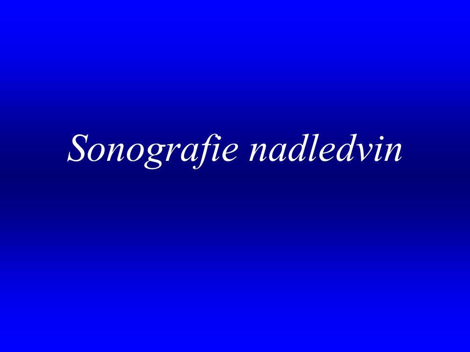 Sonografie nadledvin .