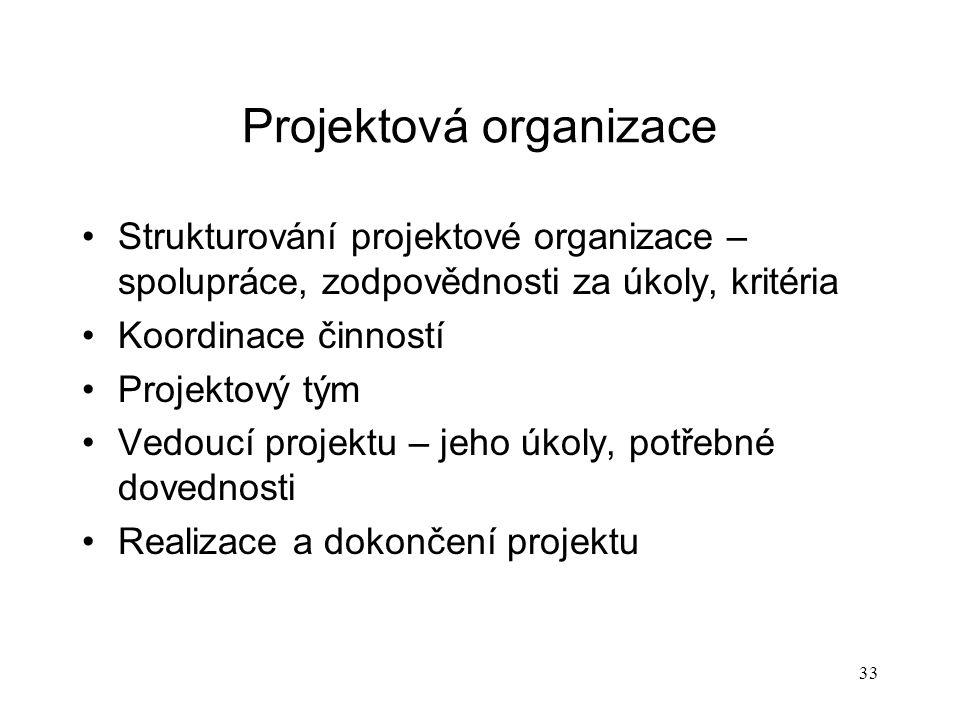 Projektová organizace
