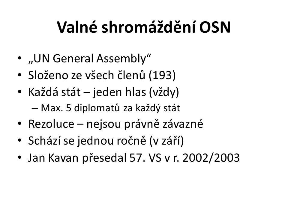 """Valné shromáždění OSN """"UN General Assembly"""