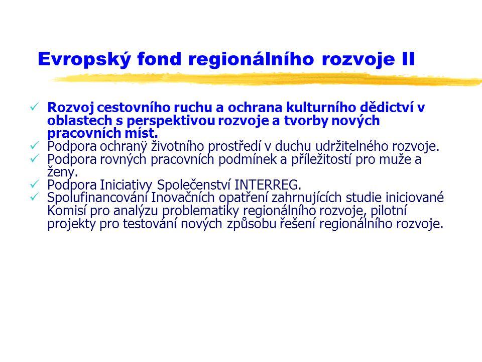 Evropský fond regionálního rozvoje II