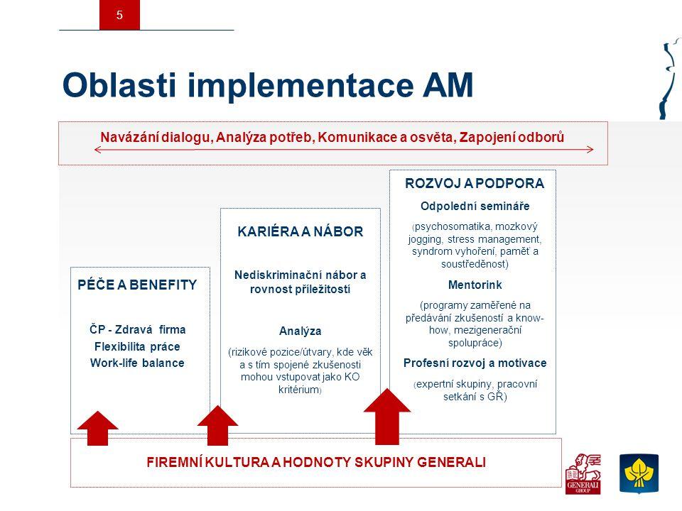 Oblasti implementace AM
