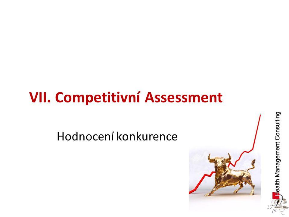 VII. Competitivní Assessment