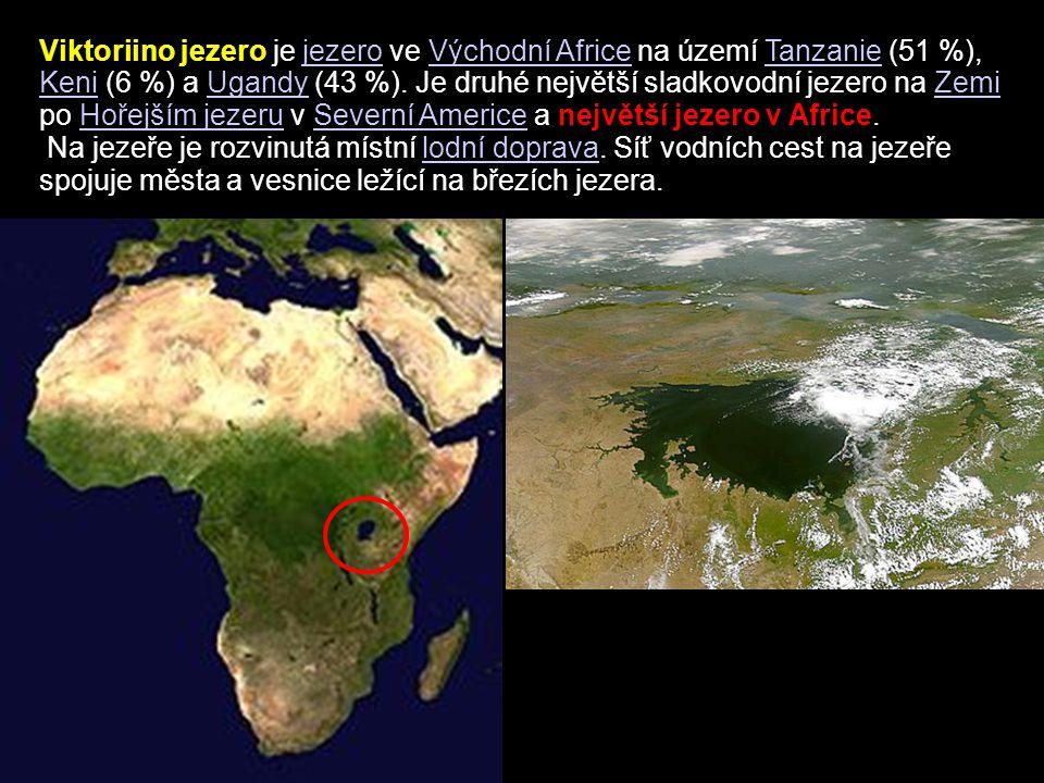 Viktoriino jezero je jezero ve Východní Africe na území Tanzanie (51 %), Keni (6 %) a Ugandy (43 %). Je druhé největší sladkovodní jezero na Zemi po Hořejším jezeru v Severní Americe a největší jezero v Africe.