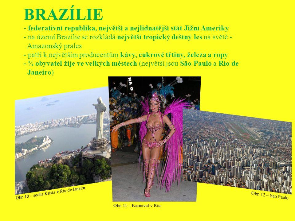 BRAZÍLIE federativní republika, největší a nejlidnatější stát Jižní Ameriky. na území Brazílie se rozkládá největší tropický deštný les na světě -
