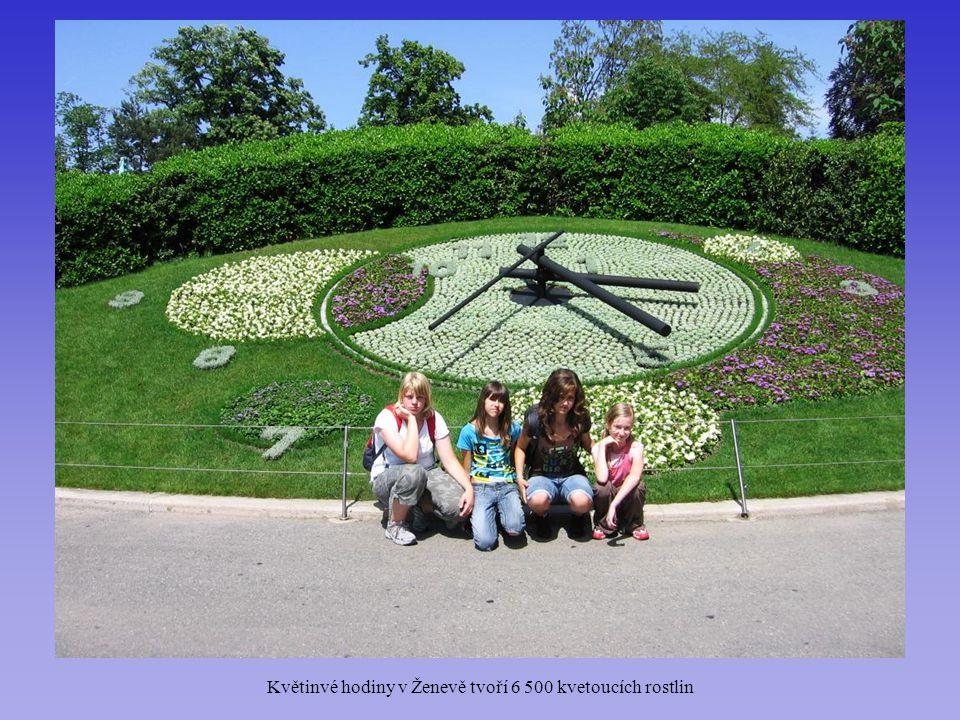 Květinvé hodiny v Ženevě tvoří 6 500 kvetoucích rostlin