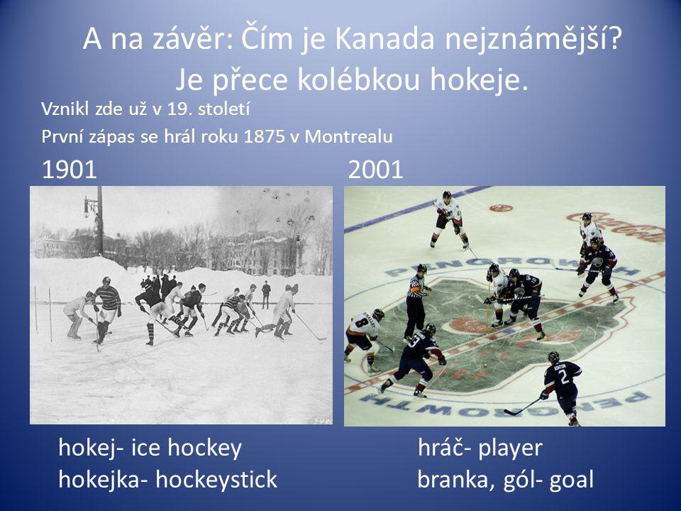 A na závěr: Čím je Kanada nejznámější Je přece kolébkou hokeje.