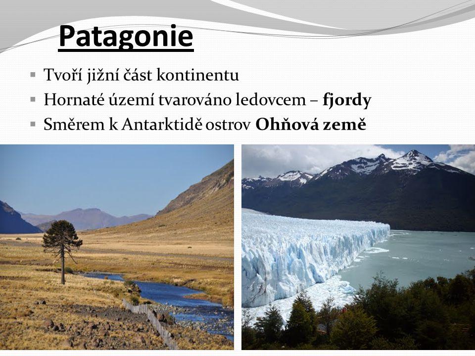 Patagonie Tvoří jižní část kontinentu