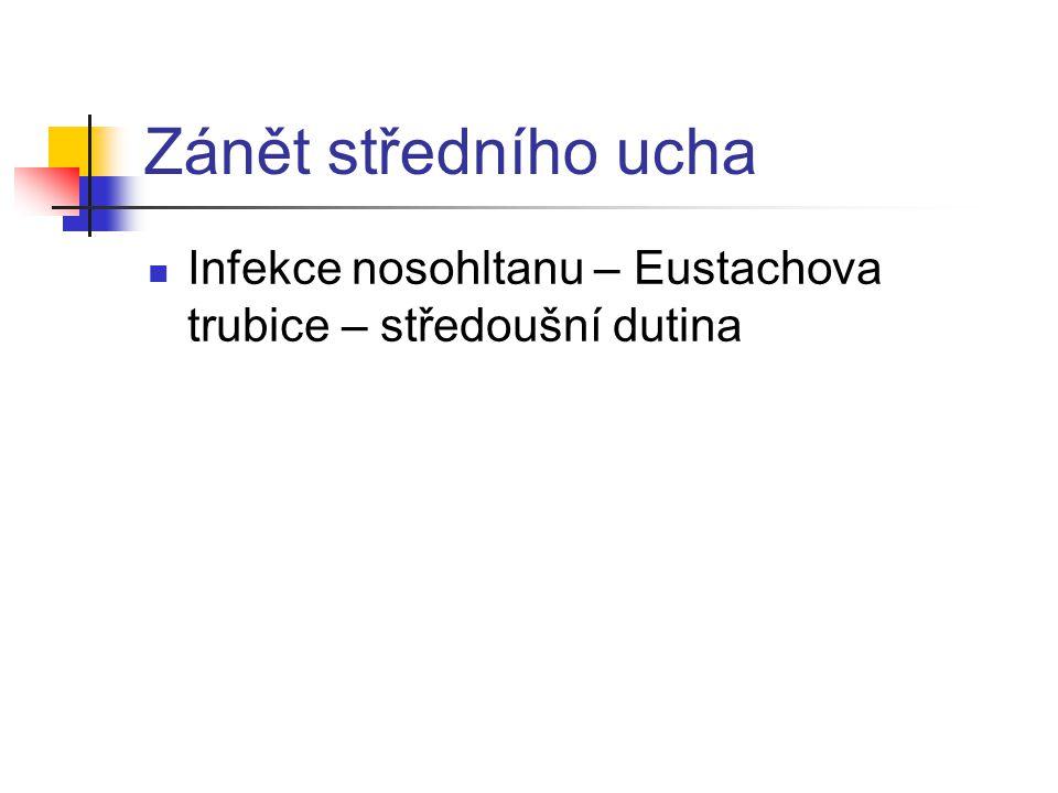 Zánět středního ucha Infekce nosohltanu – Eustachova trubice – středoušní dutina