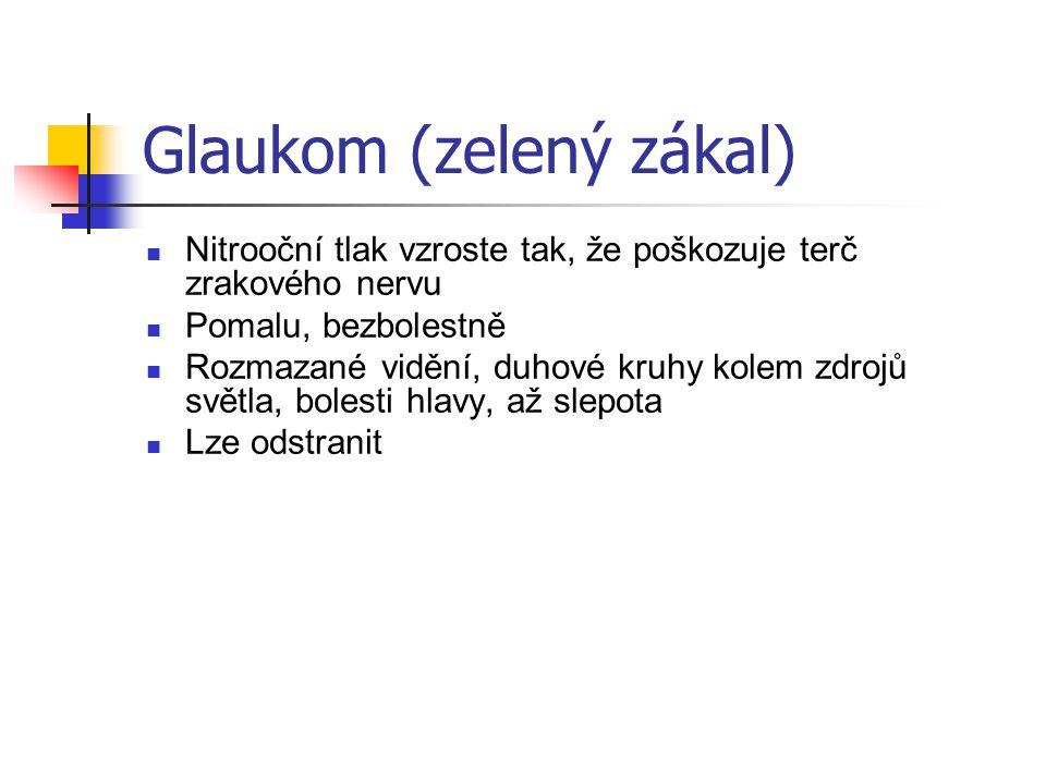 Glaukom (zelený zákal)