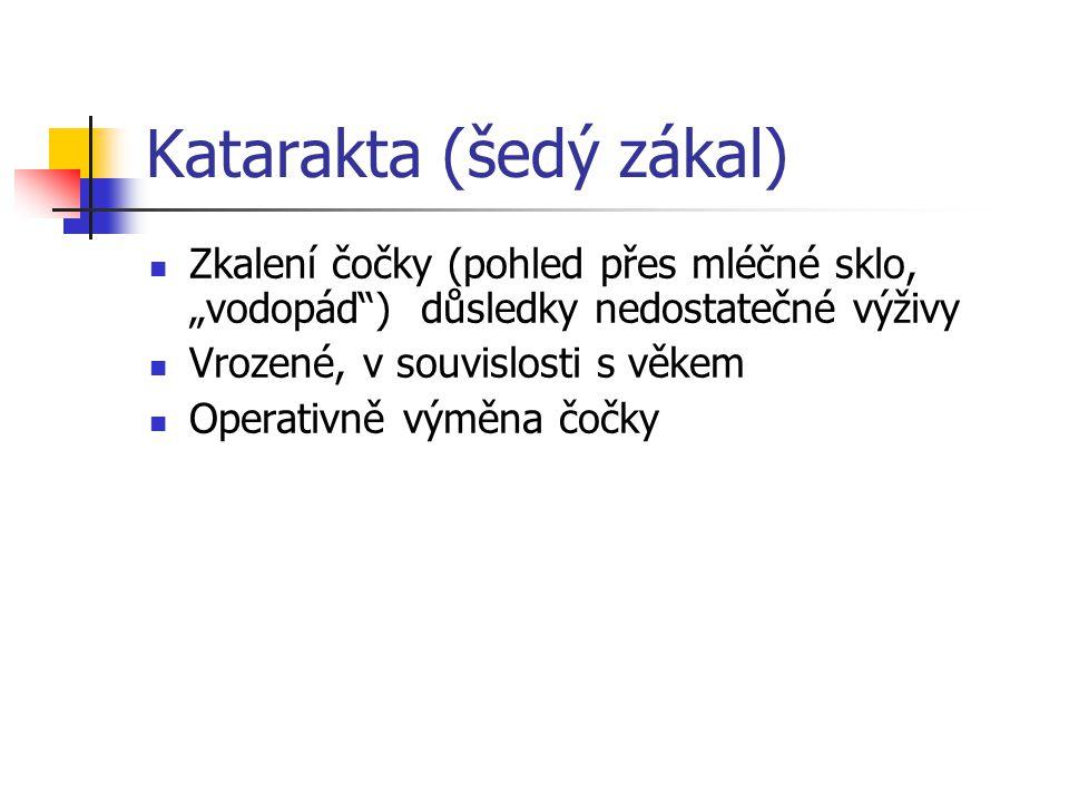 Katarakta (šedý zákal)