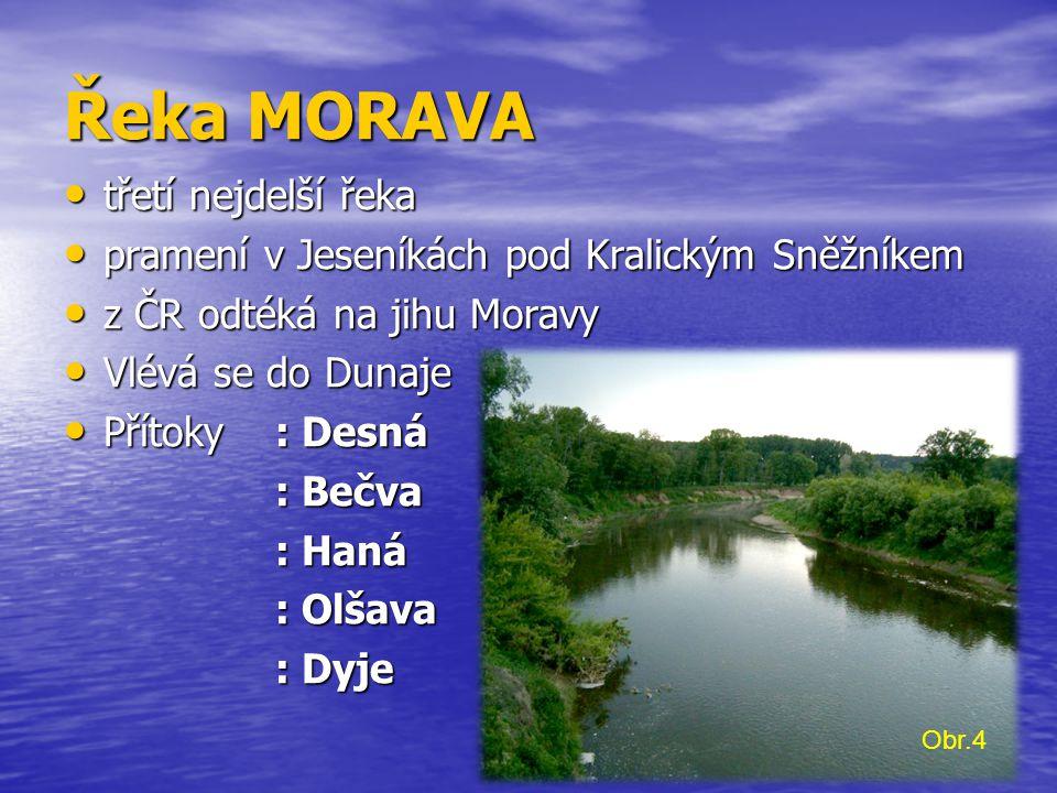 Řeka MORAVA třetí nejdelší řeka
