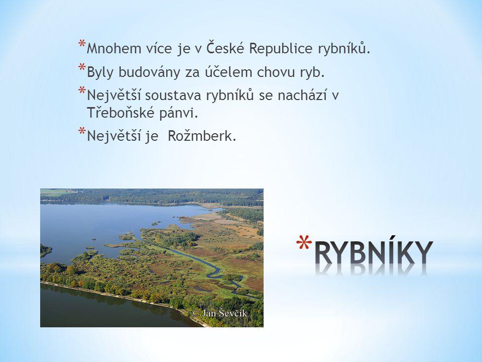 RYBNÍKY Mnohem více je v České Republice rybníků.