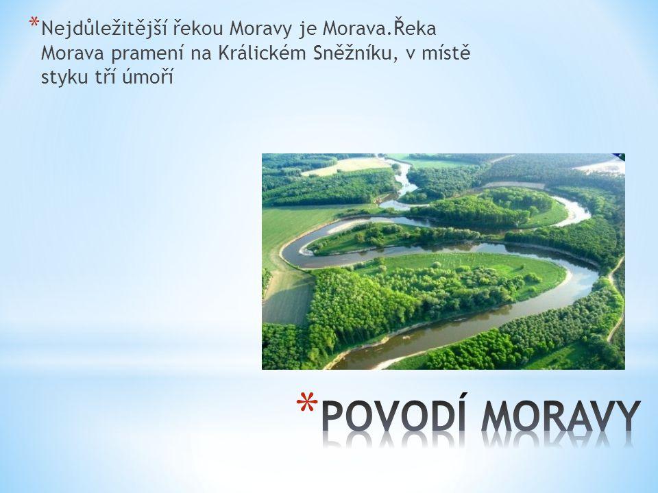 Nejdůležitější řekou Moravy je Morava