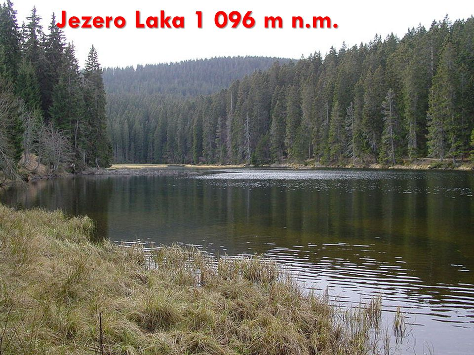 Jezero Laka 1 096 m n.m. http://cs.wikipedia.org/wiki/Soubor:Jezero_Laka.JPG