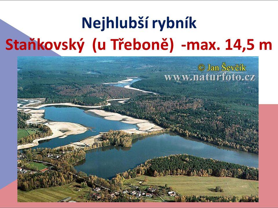 Staňkovský (u Třeboně) -max. 14,5 m