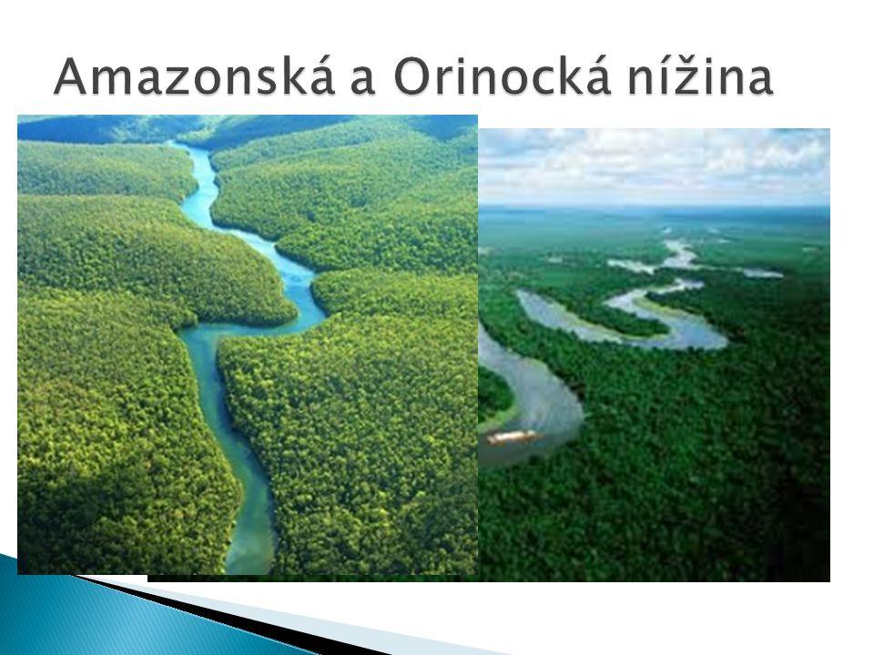 Amazonská a Orinocká nížina