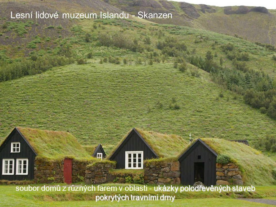 Lesní lidové muzeum Islandu - Skanzen