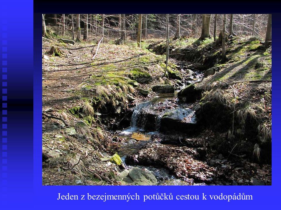 Jeden z bezejmenných potůčků cestou k vodopádům