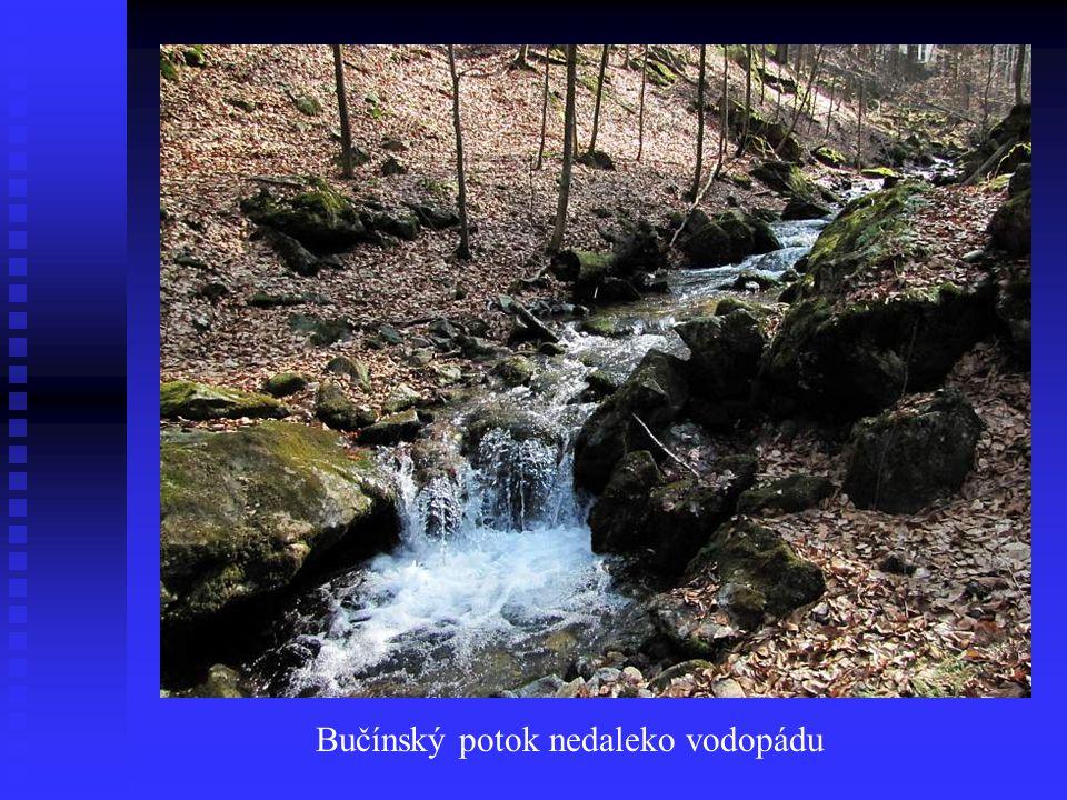 Bučínský potok nedaleko vodopádu