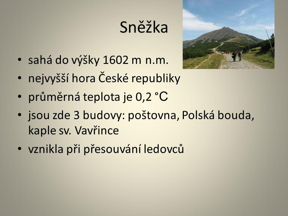 Sněžka sahá do výšky 1602 m n.m. nejvyšší hora České republiky