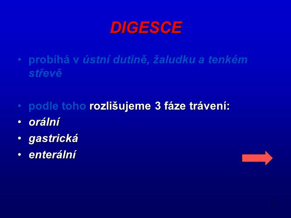 DIGESCE probíhá v ústní dutině, žaludku a tenkém střevě