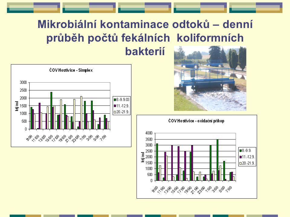 Mikrobiální kontaminace odtoků – denní průběh počtů fekálních koliformních bakterií